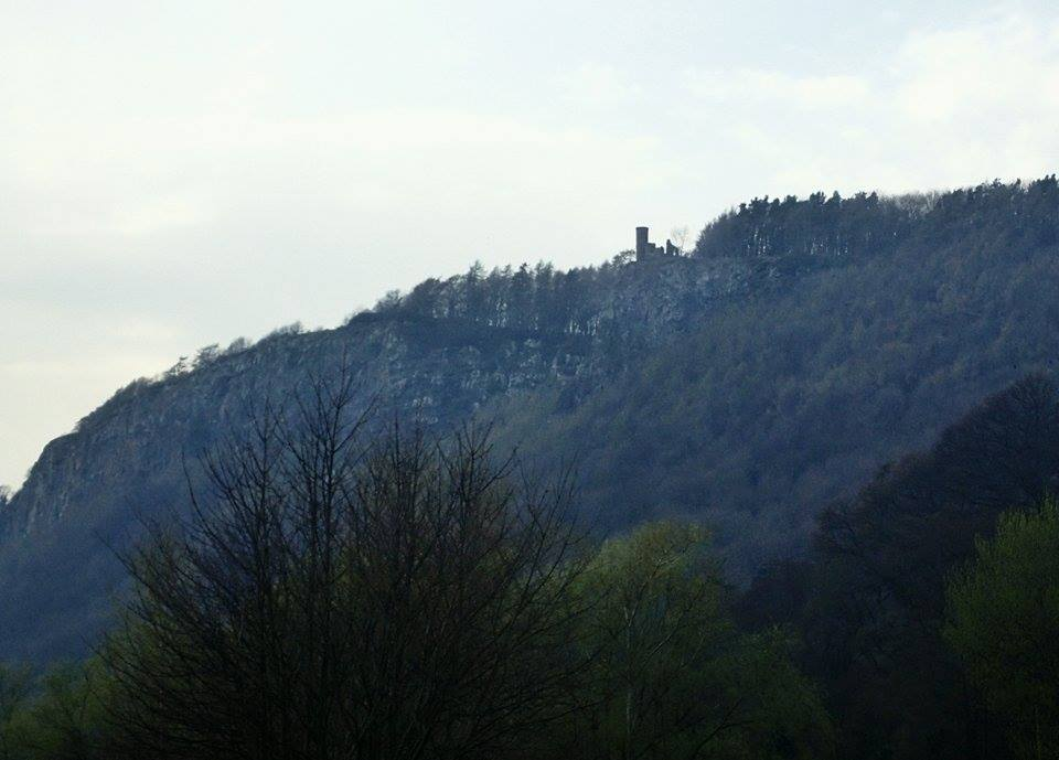 Kinnoull Hill tower!